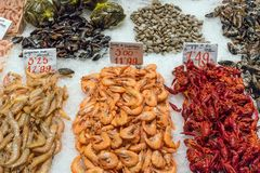 Prawns and scallops for sale. At a market in Madrid, Spain Royalty Free Stock Photo