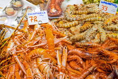 Prawns and shrimps for sale Royalty Free Stock Photo