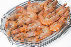 Prawns on white background Royalty Free Stock Image