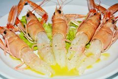 Prawns on a white plate background stock photos