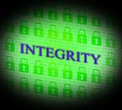 Prawość dane Reprezentuje bajt przyzwoitość I fact ilustracja wektor