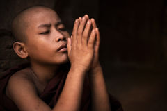 Prayer. Young little novice monk praying stock photography