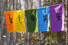 Prayer Flags. Buddhist prayer flags strung between trees in the winter Royalty Free Stock Photo