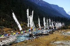 Prayer flags along a river, northeast India. Prayer flags along river bank, Yumtang Valley, Sikkim, northeast India Himalayans Stock Photo