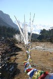 Prayer flags along a river, northeast India Stock Images