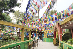 Prayer flags on buddhist temple. Buddhist temple with eyes in Darjeeling, India with decorative and colorful prayer flags Royalty Free Stock Image