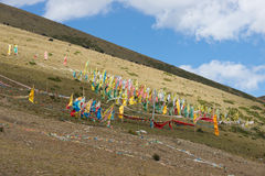 Prayer Flags with hill scenery Stock Image