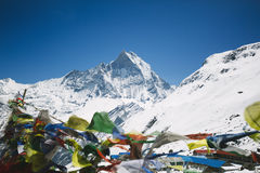 Prayer flags at Himalayas Stock Image