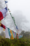Prayer flags in the misty woods surrounding Dochu La Royalty Free Stock Photos
