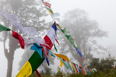 Prayer flags in the misty woods surrounding Dochu La Stock Image