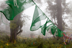 Prayer flags in the misty woods surrounding Dochu La Stock Images