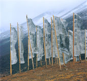 Prayer flags on the mountain. In tibet Royalty Free Stock Photography