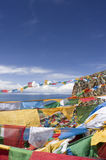 Prayer Flags and Namtso Lak Royalty Free Stock Photography