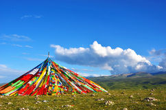 Prayer flags on the Qinghai grasslands Royalty Free Stock Images