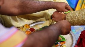Prayer in the Indian Marriage stock video footage
