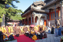The prayer meeting Royalty Free Stock Photos