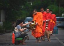 Prayer and Morning alms ceremony, Luang Prabang, Laos royalty free stock photography
