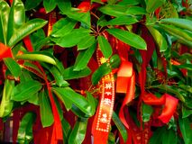 Prayer ribbons Royalty Free Stock Image