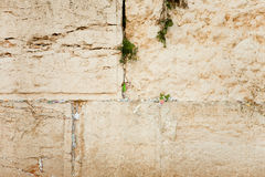Prayer sheets. In cracks of Western Wall Royalty Free Stock Image