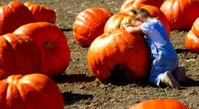 Prayer to the Great Pumpkin royalty free stock photos