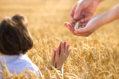 Prayer to the provider Royalty Free Stock Photography