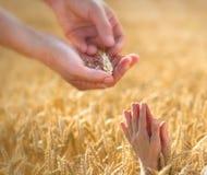 Prayer to the provider Stock Image