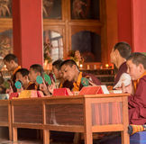 Prayers in Buddhist temple. Portrait of Young monks chanting prayers at the Namdroling Monastery in India stock photo