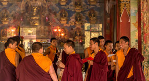 Prayers in Buddhist temple. Portrait of Young monks chanting prayers at the Namdroling Monastery in India stock image