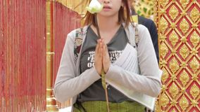 Prayers offered at Wat Phrathat Doi Suthep Chiang Mai stock video