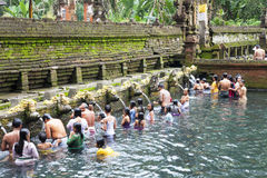 Prayers at Tirtha Empul, Bali, Indonesia royalty free stock photos