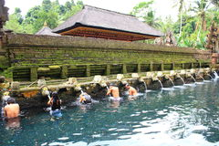 Prayers at Tirtha Empul, Bali, Indonesia. Image of devotees going through a hindu ritual at a religious bathing pool located within a temple known as Tirtha royalty free stock photos