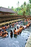 Prayers at Tirtha Empul temple, Bali. Image of devotees going through a hindu ritual at a religious bathing pool located within a temple known as Tirtha Empul at royalty free stock photos