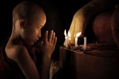 Praying Fotografia de Stock Royalty Free
