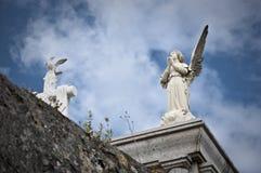Praying angel Stock Photos