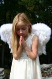Praying Angel. Young female child wearing angel wings and praying Stock Image