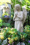 Praying angel Royalty Free Stock Image