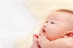 Praying baby Stock Images