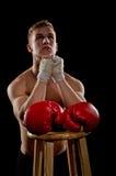 Praying Boxer Stock Image