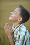 Praying boy  in field Royalty Free Stock Photography