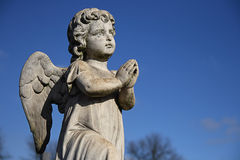 Praying cherub Stock Image