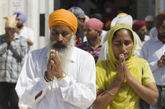 Sikhs at the Golden Temple in Amristar, Punjab, India. Man and woman praying in India royalty free stock image