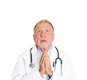 Praying doctor Royalty Free Stock Images