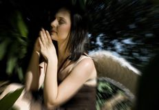 Praying fairy front blur Royalty Free Stock Photos