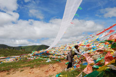 Praying in front of  the wind-horse flags. A tibetan is  praying in front of  the wind-horse flags in Nakchu,Tibet Royalty Free Stock Images