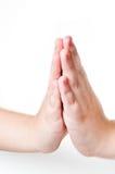 Praying hands Royalty Free Stock Image