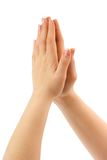 Praying hands. Woman praying hands isolated on white background royalty free stock photos