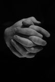 Praying hands. Hands clasped together to pray Stock Photography