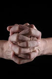 Praying hands. On a black background Stock Images
