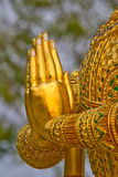 The praying hands of the guardian angel Royalty Free Stock Photography