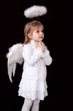 Praying little angel Stock Image